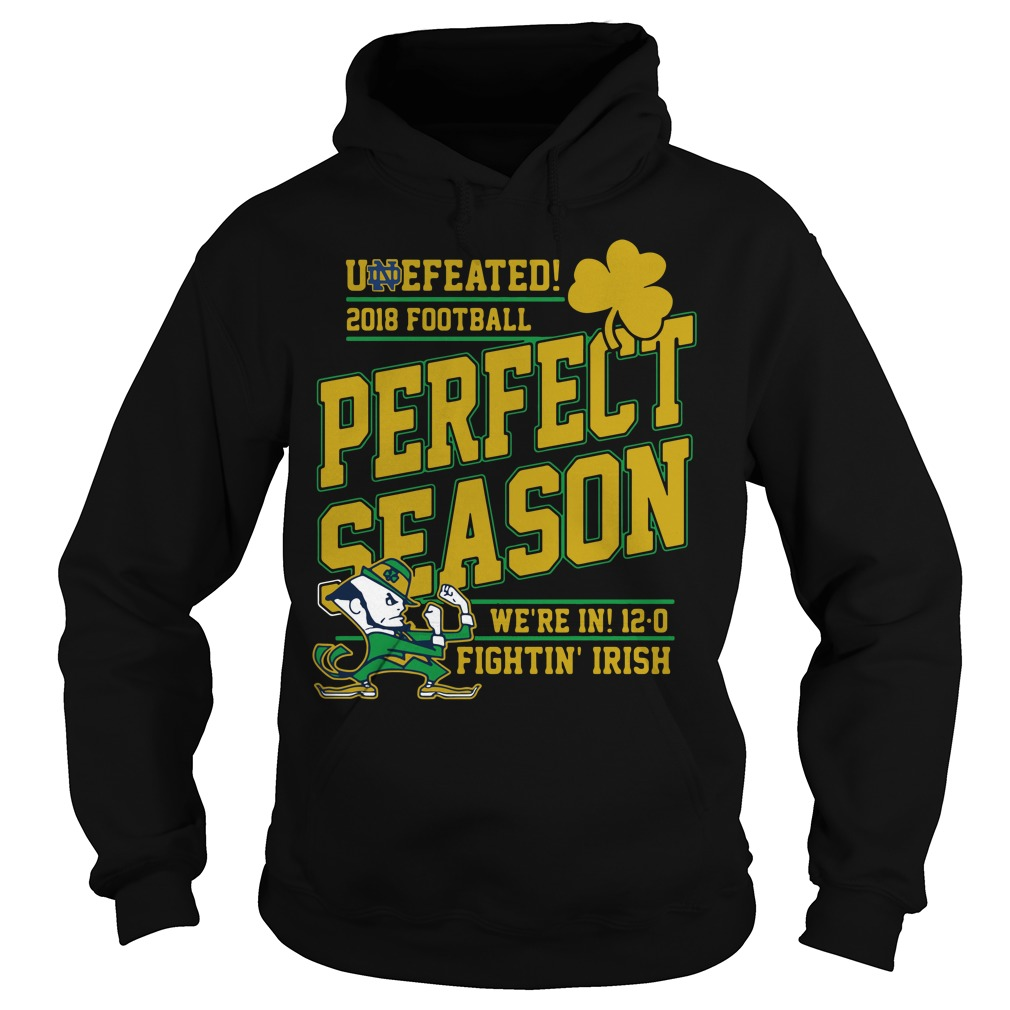 Undefeated 2018 Football Perfect Season We're In 12 0 Fightin' Irish Hoodie