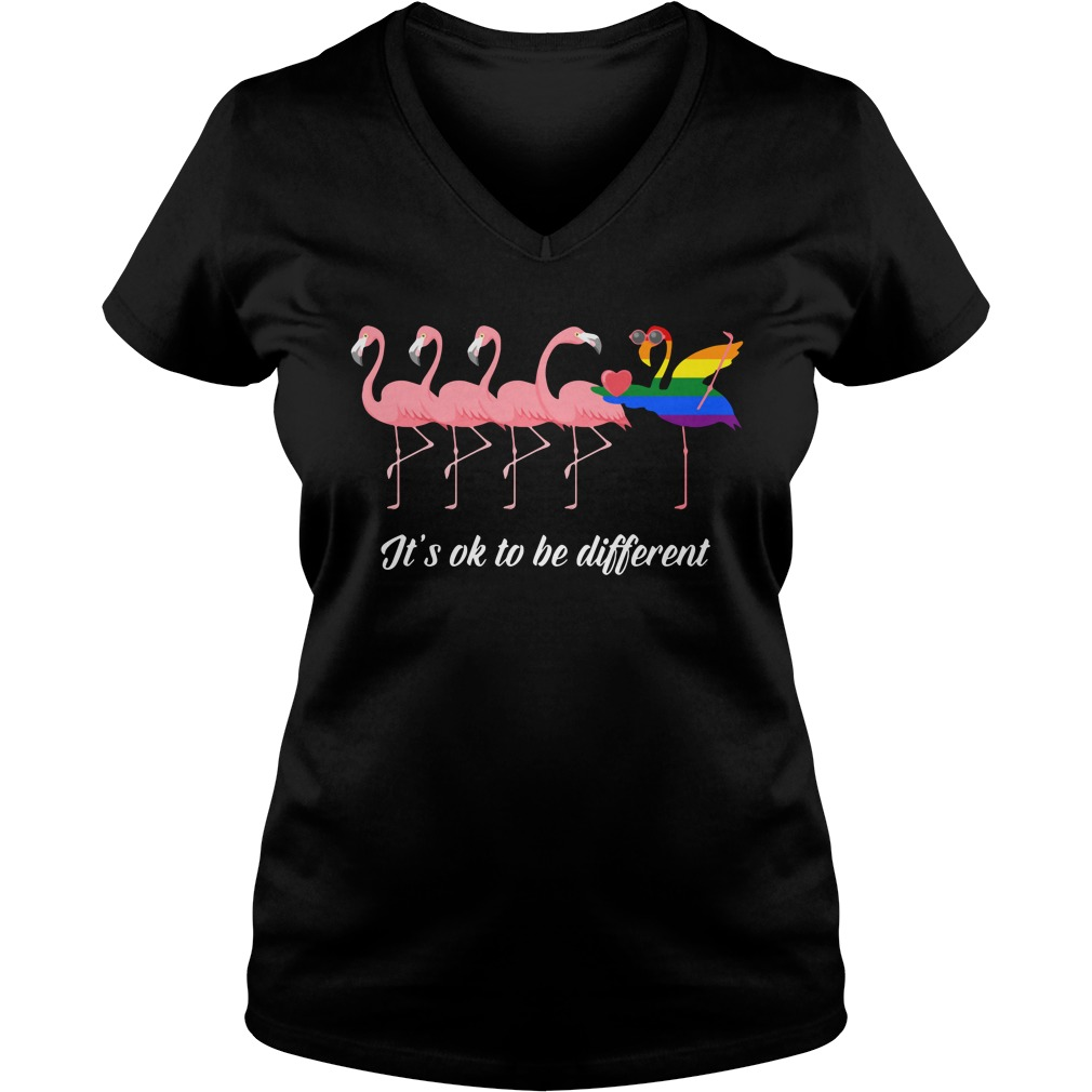 Flamingo Lgbt It's Ok To Be Different V-neck T-shirt