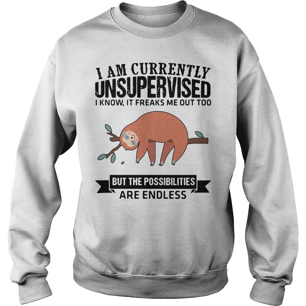 Sloth Currently Unsupervised Know Freaks Possibilities Endless Sweater