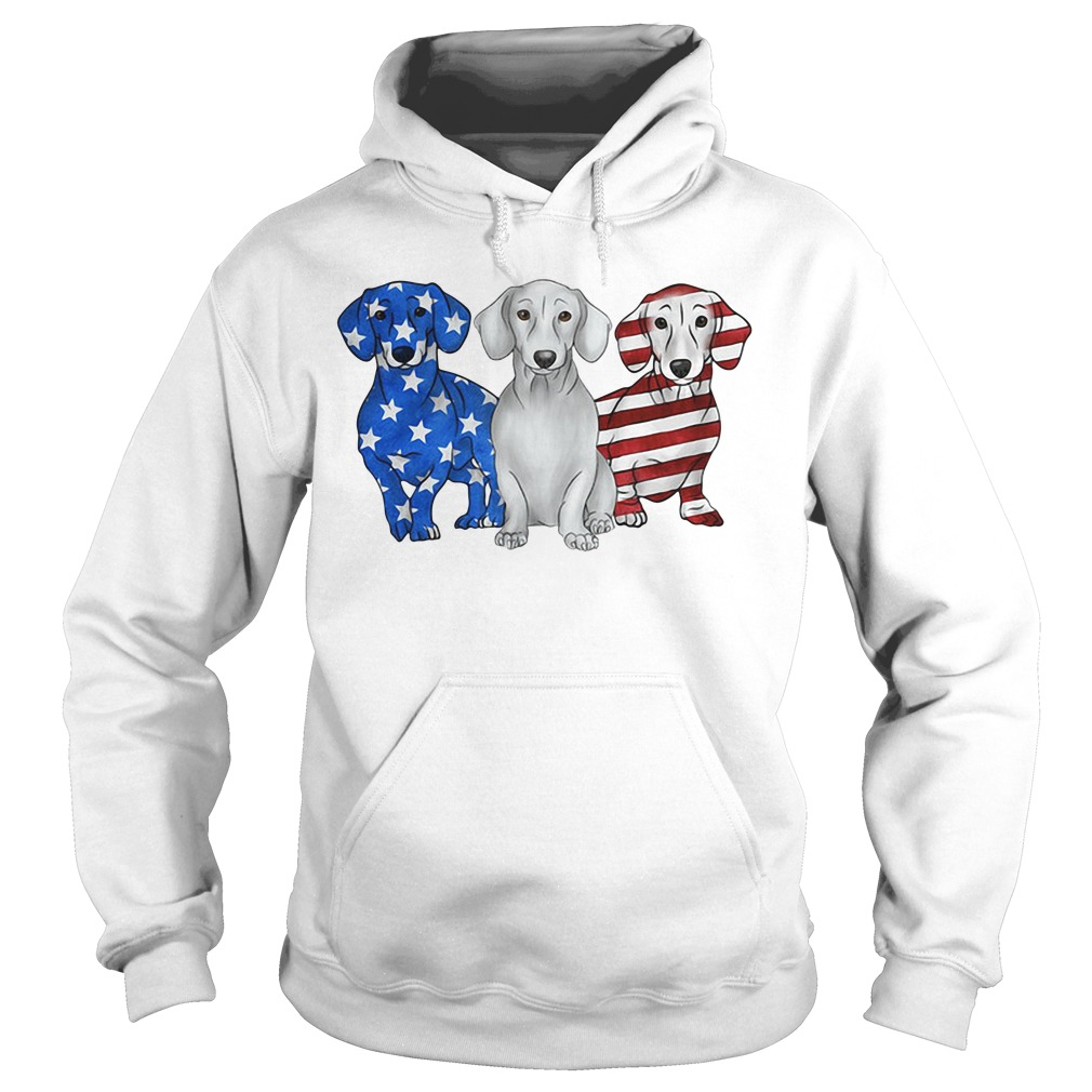 Independence Day 4th Of July Dachshund America Flag Hoodie