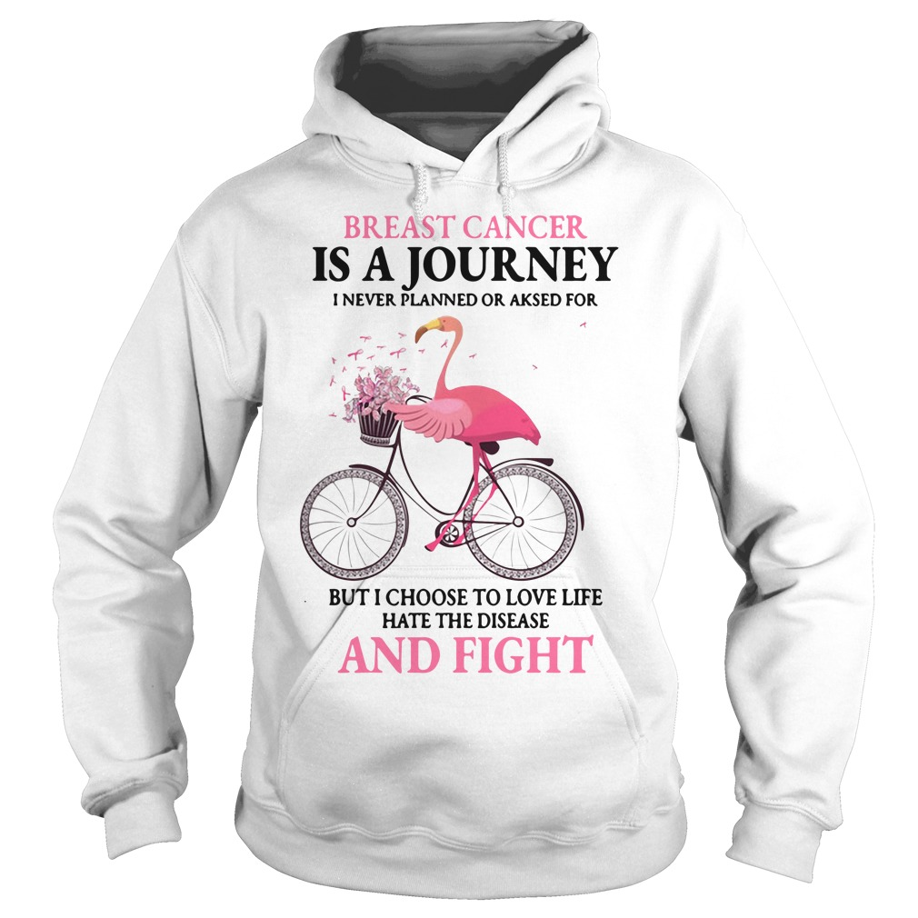 Flamingo Breast Cancer Is A Journey I Never Planned Or Asked For Hoodie
